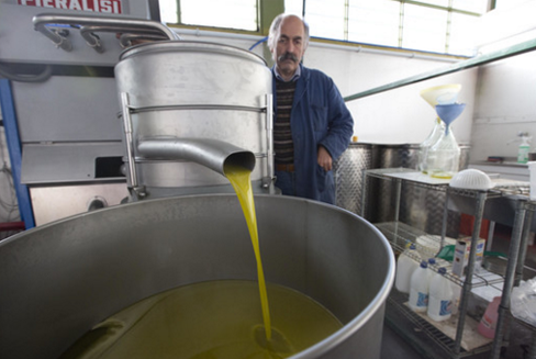 '60 Minutes' has exposed olive oil fraud, an estimated a $16 billion-a-year enterprise?